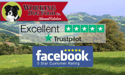 Working Dog Food Co Advanced Nutritional Food For